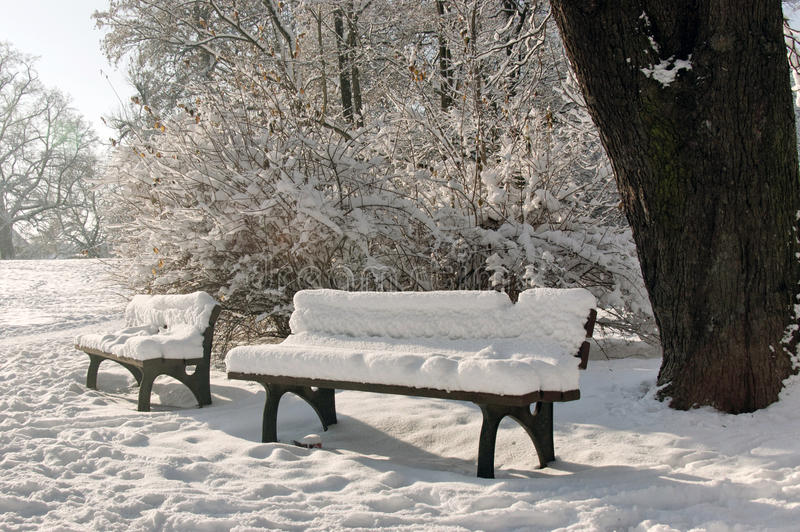 Download Two Benches Covered With Snow Stock Image - Image of resting, sunlight: 12585719
