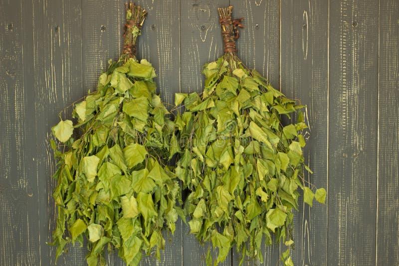 Two birch broom. stock image