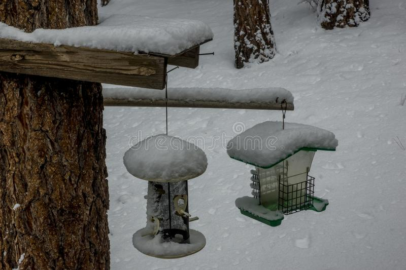 Two Bird Feeders in Snow royalty free stock photo