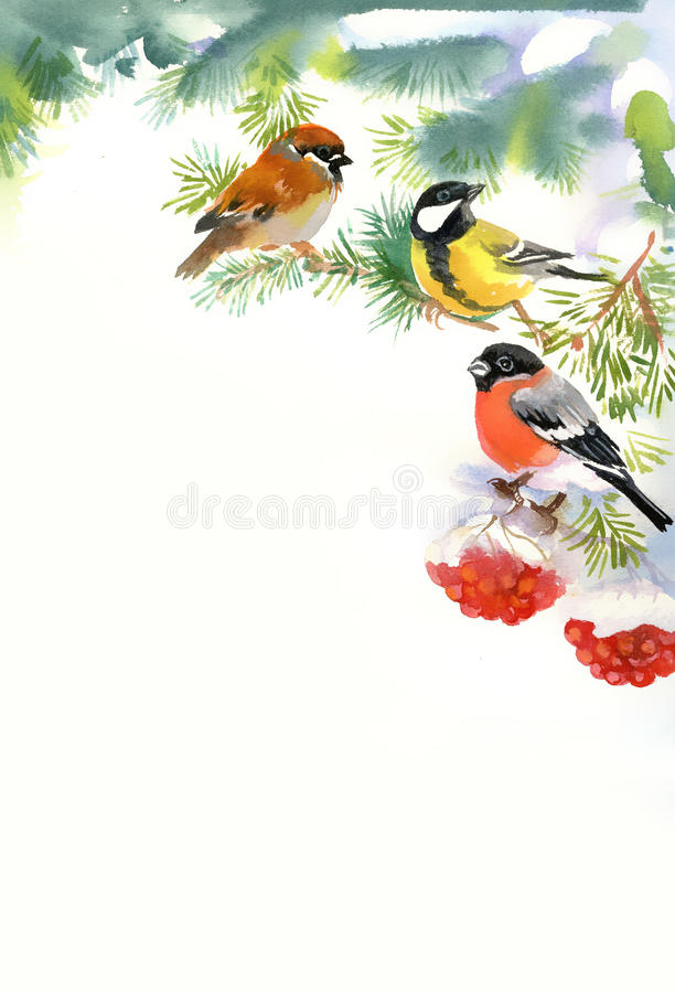 Download Two Birds And Bullfinch On The Snowy Branch Stock Illustration - Image: 34388393