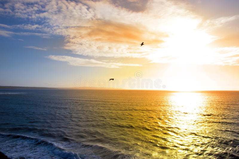Two birds flying into the sunset. In Irelands wild atlantic way near Ballybunion county Kerry stock photography