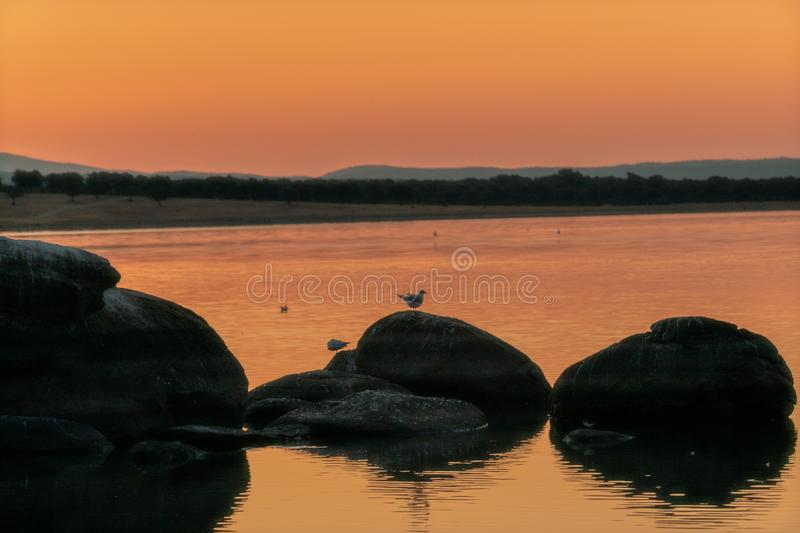 Two Birds silhouette in a rock at sunrise royalty free stock image