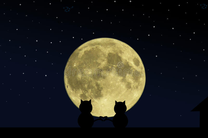 Two black cat crossed their tails in the form of heart on the roof of the house at the time of the full moon. Two black cat crossed their tails in the form of vector illustration