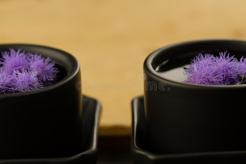 Two black Chinese cups with flowers on the background of empty old vintage books. Menu, recipe stock photography