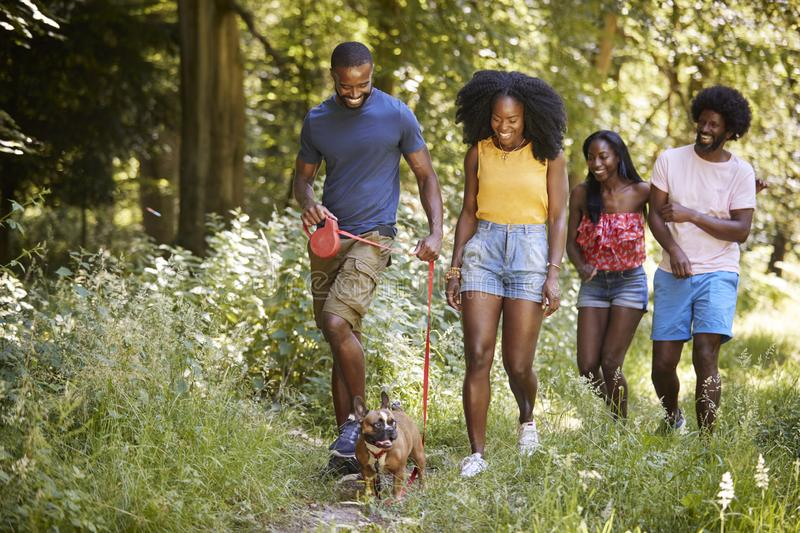 Two black couples walking with a dog in a forest royalty free stock image