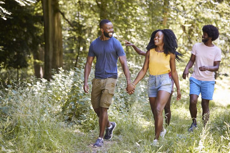 Two black couples walking together in woods royalty free stock photography