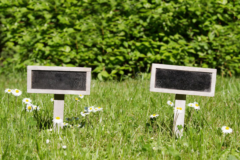 Two Blank signboard in the meadow stock photography
