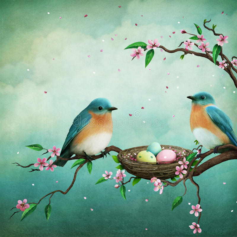 Two blue birds royalty free illustration