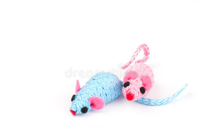 Blue and pink toy mouse for pet isolated on white background. Two blue and pink toy mice for a pet cat isolated on  white background, close-up royalty free stock photos