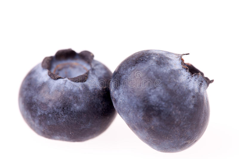 Download Two Blueberries Isolated stock image. Image of vegan - 23855267