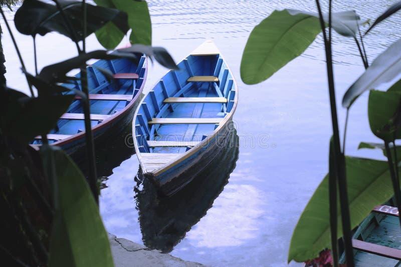 Two boats in green jungle lizenzfreie stockbilder