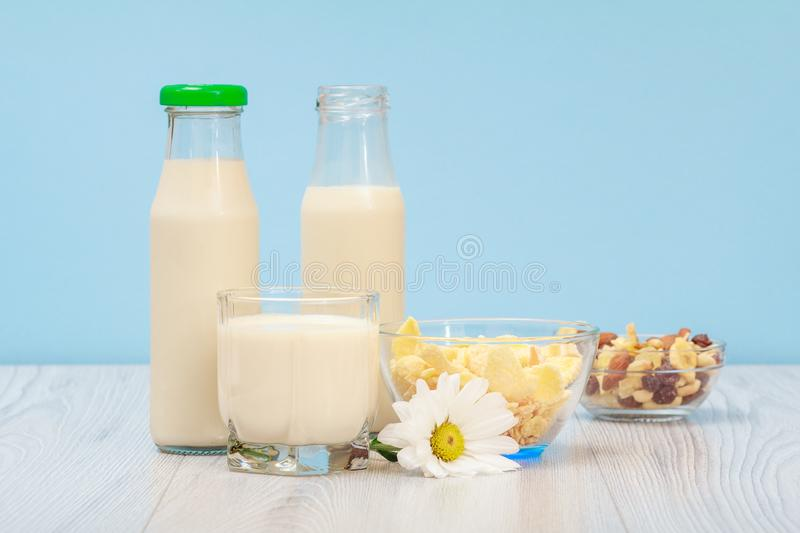 Two bottles and glass of milk, bowl with muesli on blue background royalty free stock images