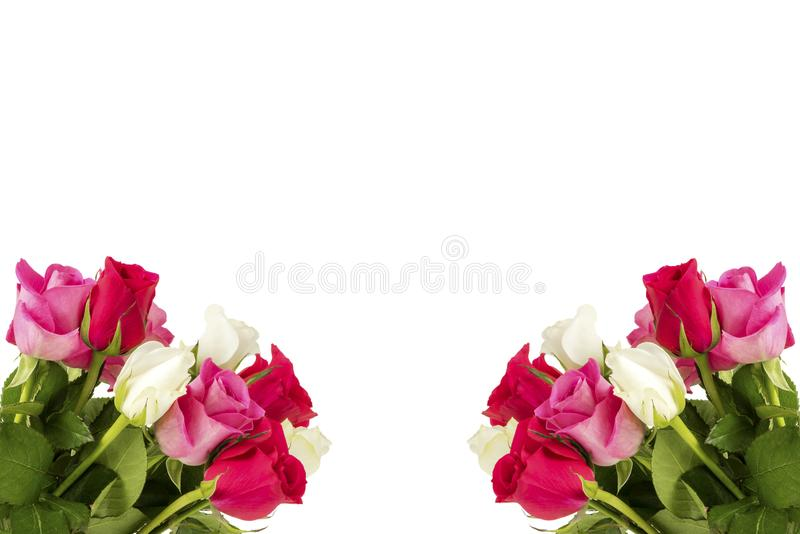 Two bouquets with roses. In front of a white background stock photos
