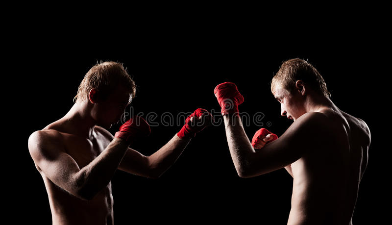Two Boxers Facing Each Other Stock Photography