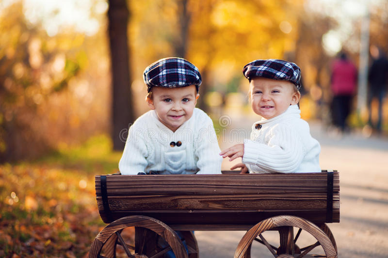 Two boys in a carriage stock images