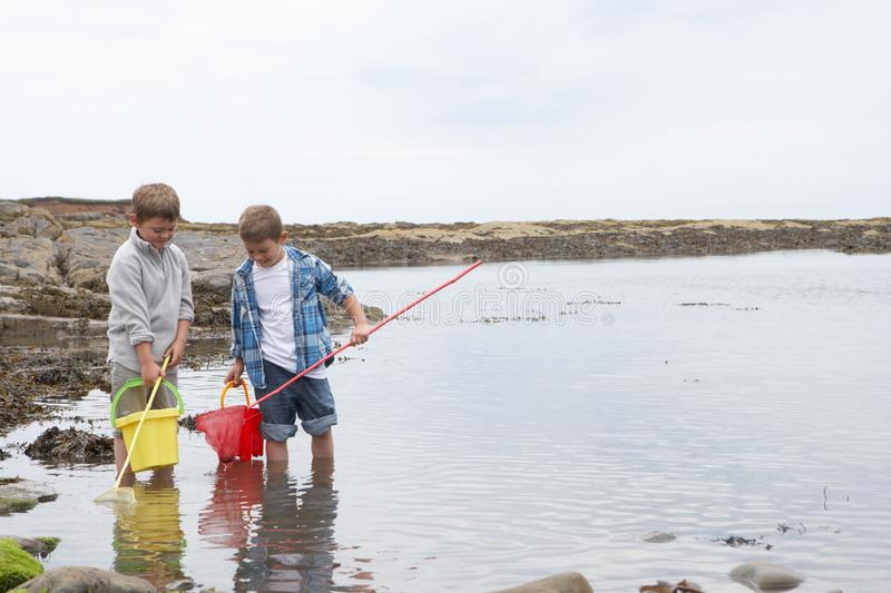 Two boys collecting shells