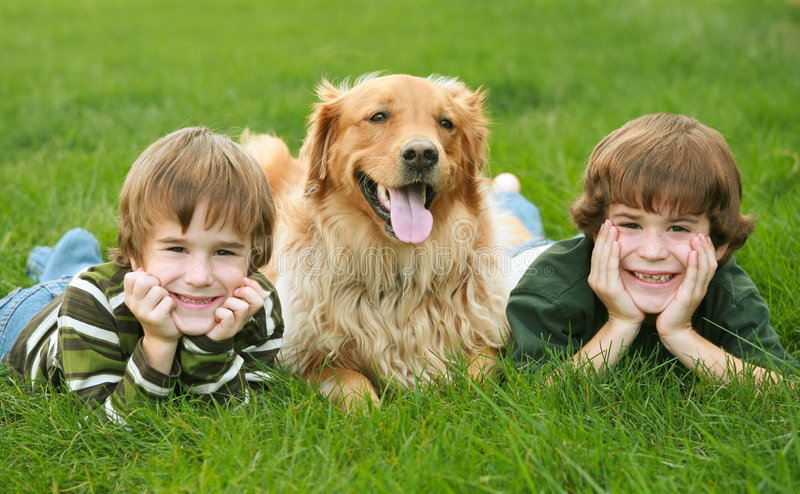 Two Boys and a Dog stock photos