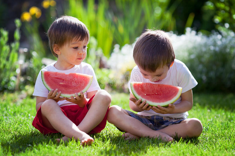 Two boys, eating watermelon in the garden. Summertime royalty free stock photography