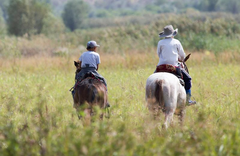 Two boys on a horse on nature stock images