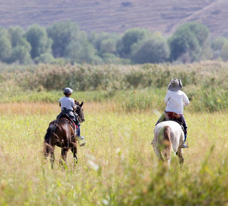 Two boys on a horse on nature stock photography