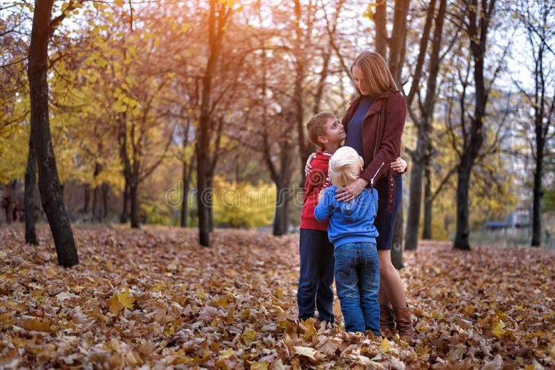 Two boys hug their pregnant mom. Family concept. Autumn park on the background royalty free stock photography