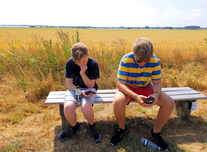 Two boys in nature occupied by their smartphones. Teens sitting on a bench by a field looking at their mobile phones stock photo