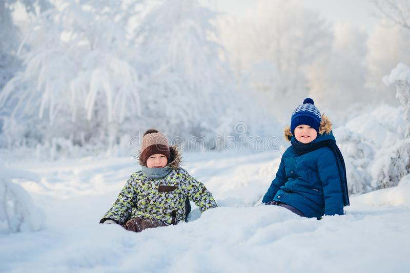 Two boys playing in a winter forest, the brothers royalty free stock image