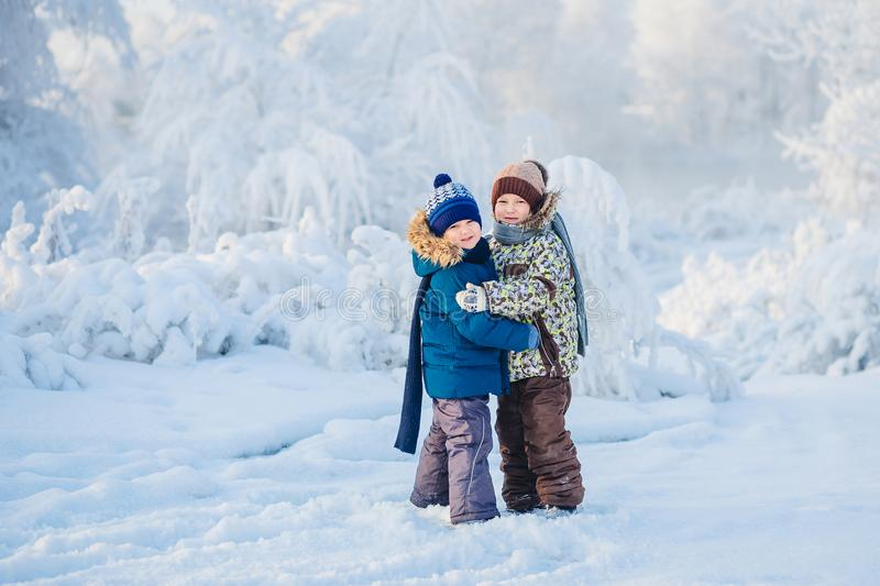 Two boys playing in a winter forest, the brothers stock image