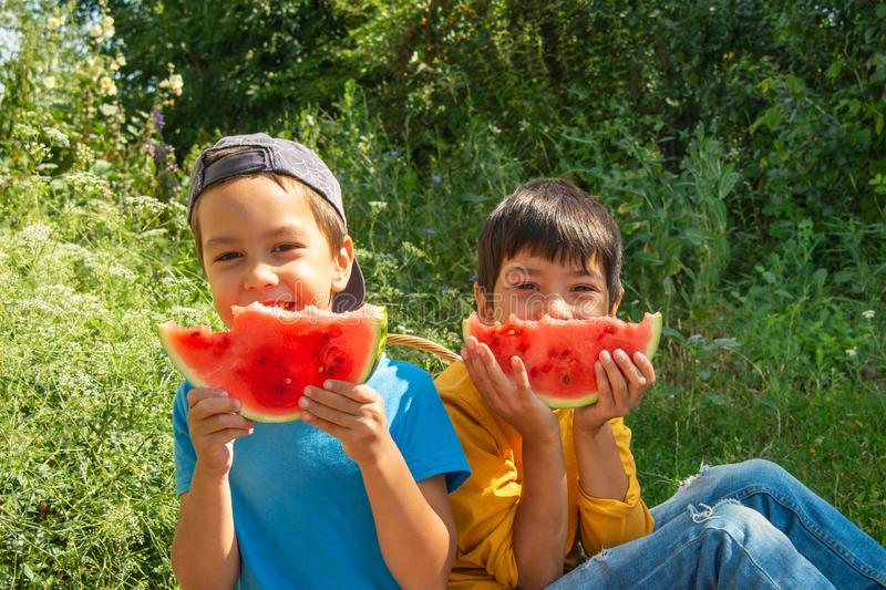 Two boys sit on the grass at a picnic and eat watermelon royalty free stock photography