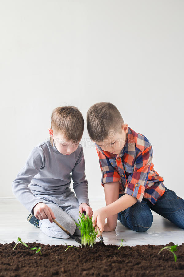 Two boys are thrown plants for Earth Day.  royalty free stock photography