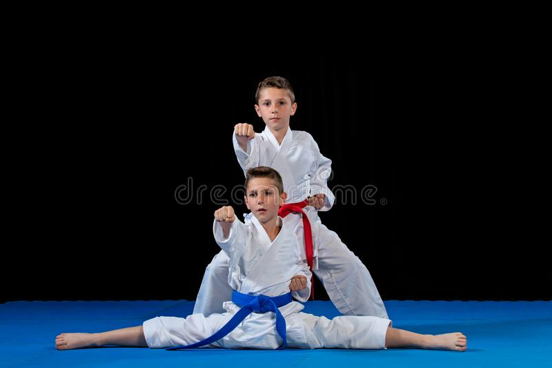 Two boys training karate kata exercises at test qualification.  stock photography