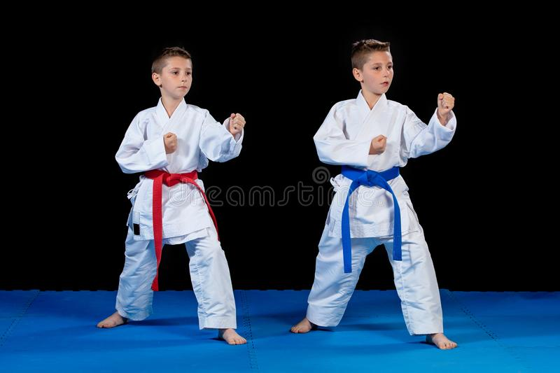 Two boys training karate kata exercises at test qualification.  royalty free stock photo