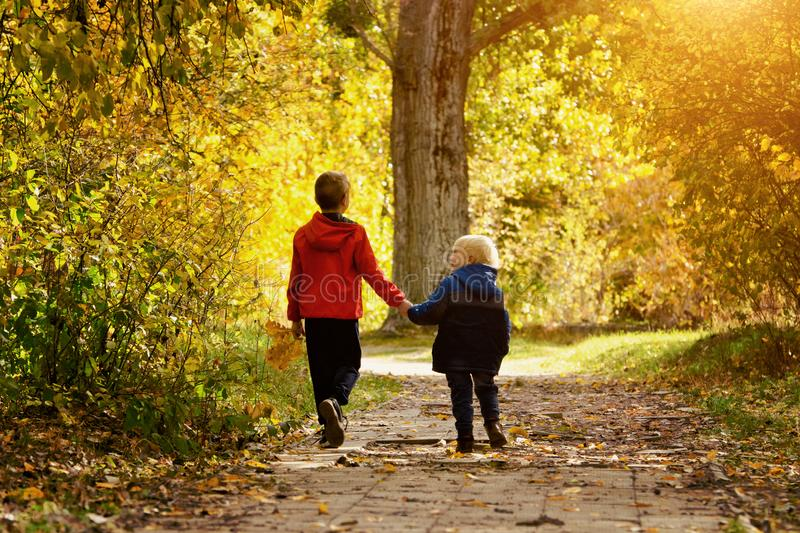 Two boys walking in the autumn park. Sunny day. Back view stock image