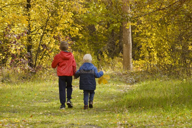 Two boys walking in the autumn park. Sunny day. Back view stock photos