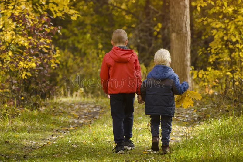 Two boys walking in the autumn park. Sunny day. Back view.  stock photo