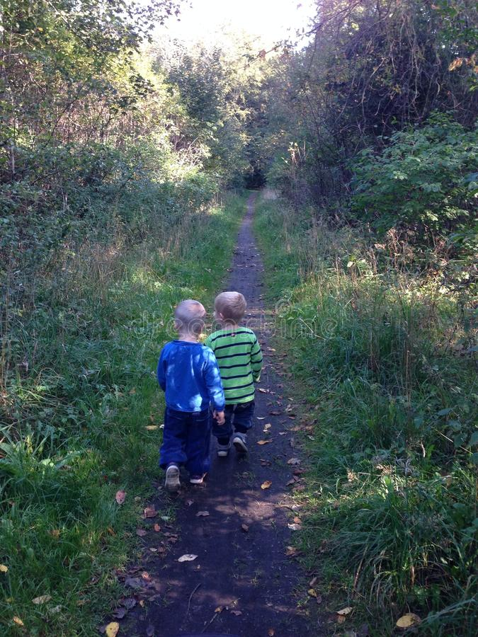 Two boys walking on a forrest path royalty free stock images