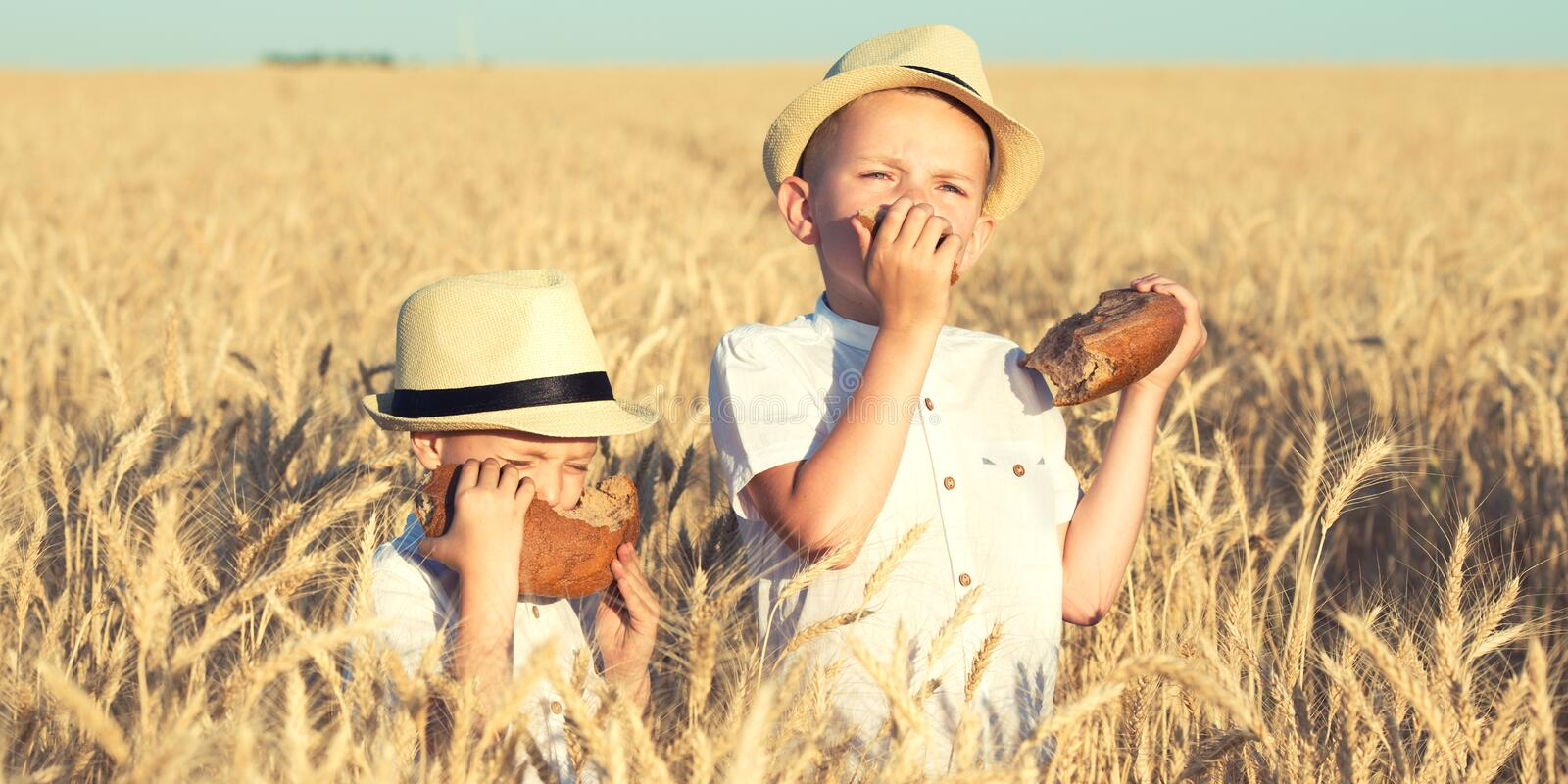 Two brothers eat black round bread on a wheat field. royalty free stock photos