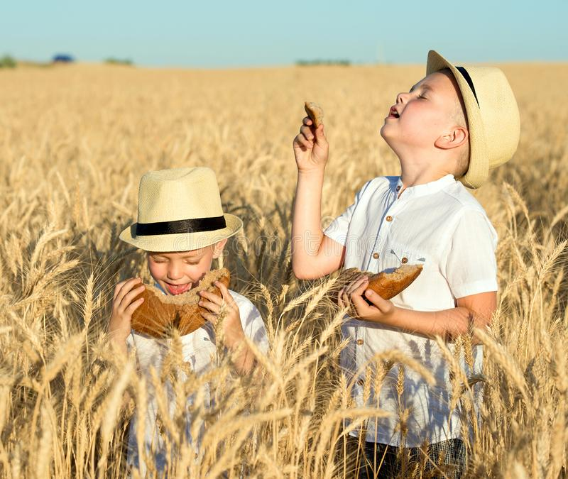 Two brothers eat black round bread on a wheat field. royalty free stock photography
