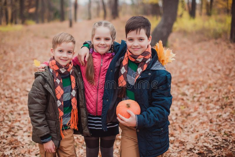 Two brothers and one sister, three children in the forest. stock photos