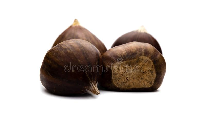 Two brown chestnuts isolated on white background royalty free stock photos
