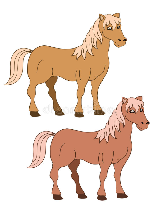 Two brown horse vector illustration