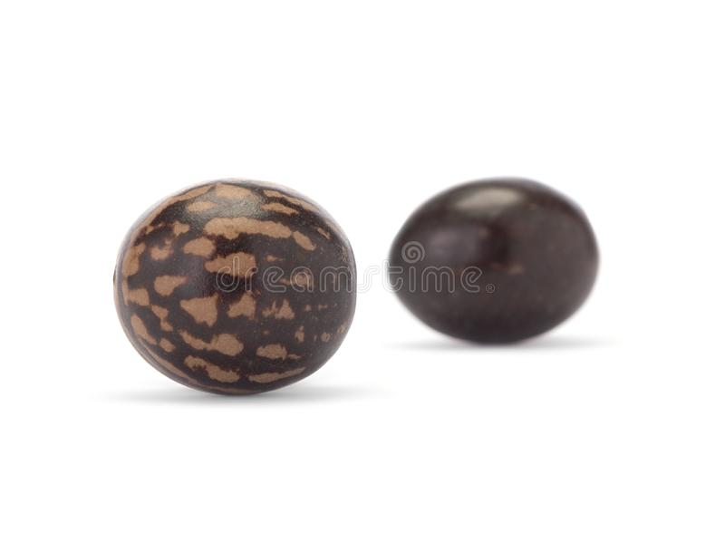 Two brown spotted beads. Isolated on white background. Close-up. Two brown and spotted beads. Isolated on white background. Close-up beads royalty free stock photo