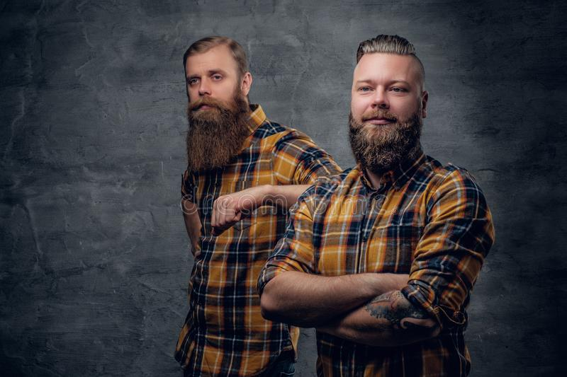 Two brutal bearded hipsters dressed in a plaid shirt. Two brutal bearded hipsters dressed in a plaid shirt posing on grey background in a studio stock image
