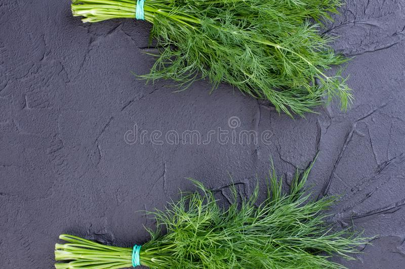 Two bunches of dill, top view. stock photo