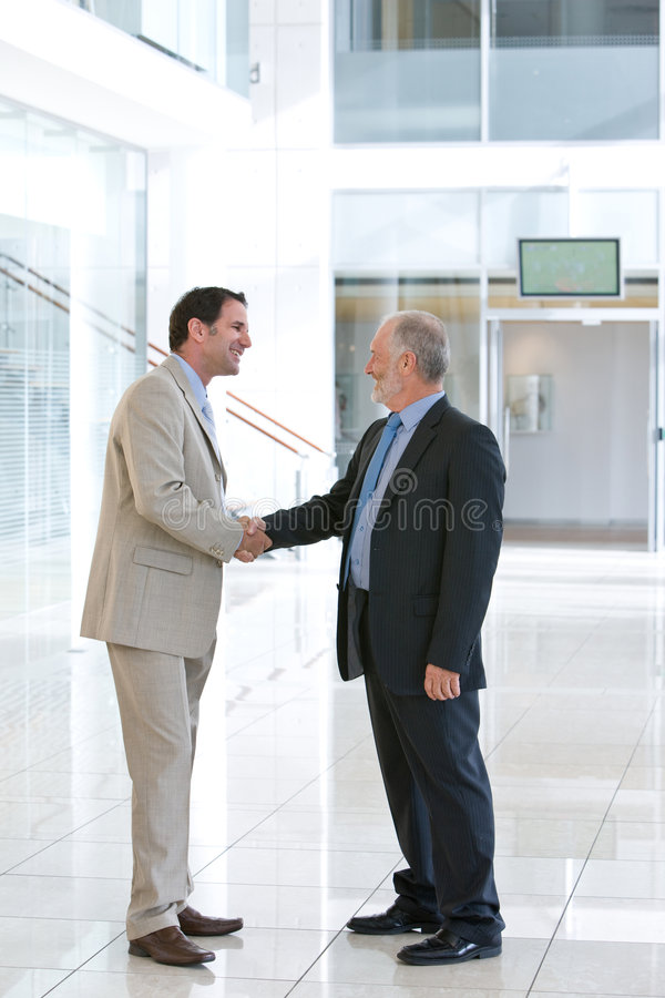 Download Two Business Men Shaking Hands Stock Image - Image: 8695375