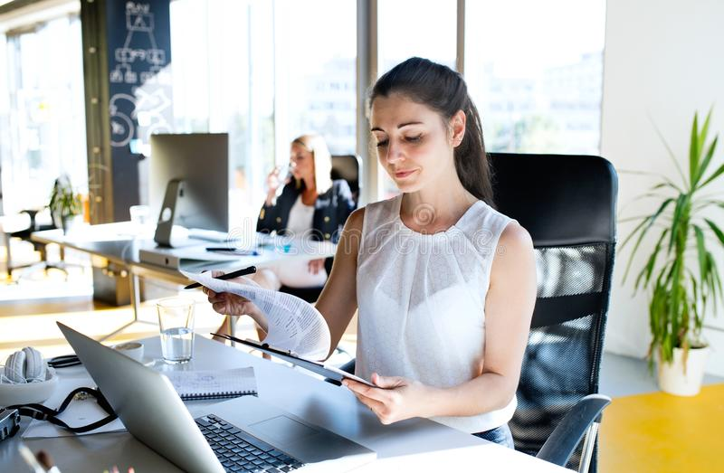 Two business women in the office working. stock photo