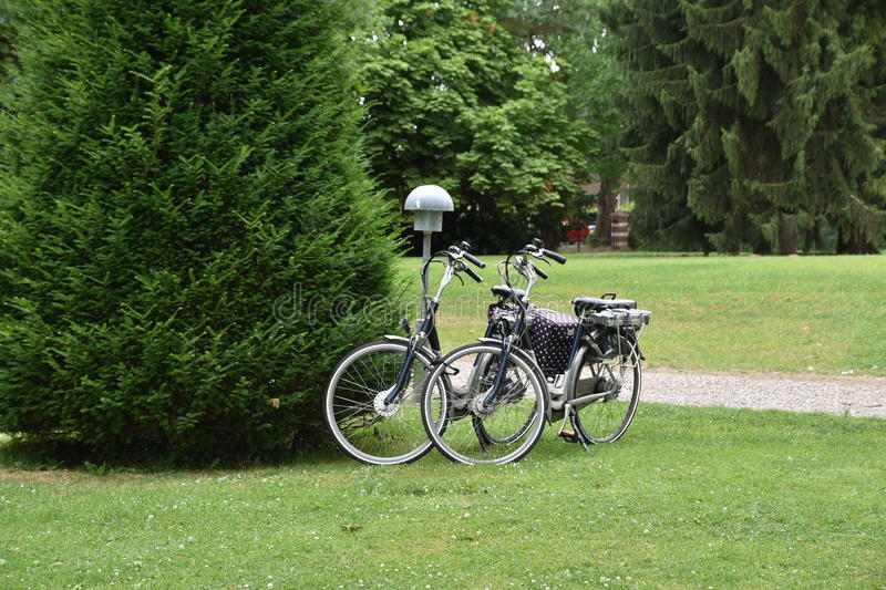 Two bycicles parked near bushes in park. stock photography