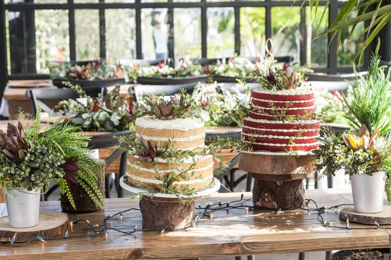 Two cakes for the wedding celebration royalty free stock photography