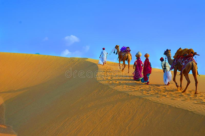 Two cameleers and women with camels walking on sand dunes of thar desert , Jaisalmer, Rajasthan, India. Two cameleers and women with camels walking on sand dunes stock photo