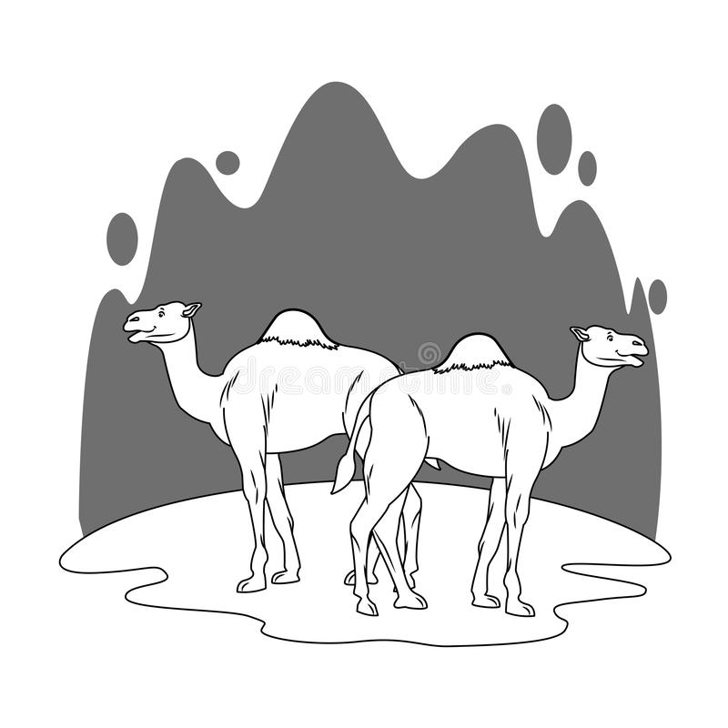 Two camels in desert scenery cartoon in black and white. Two camels in desert scenery cartoon vector illustration graphic design vector illustration